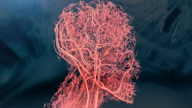 Symptômes psychologiques : Notre corps nous parle-t-il de manière indirecte?